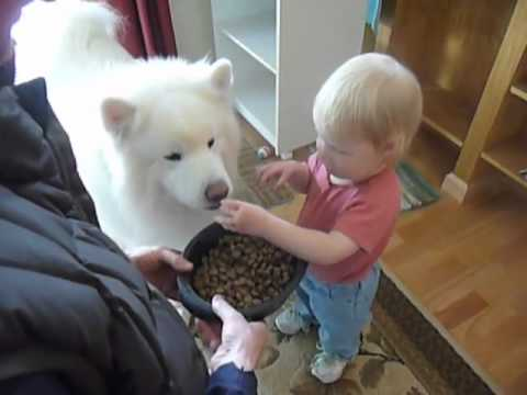 best friends 2 - feeding Bear