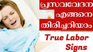 Pregnancy Labor Signs Malayalam How to Identity True Labor Pain During Pregnancy   Dailylifetales-70