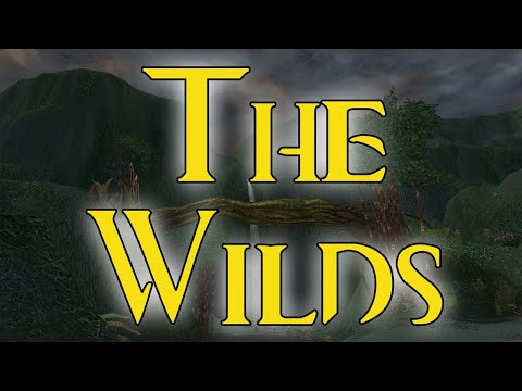 Guild Wars Hard Mode Mission Guides [Prophecies] #10 The Wilds [no cons]