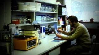 DNA Profiling