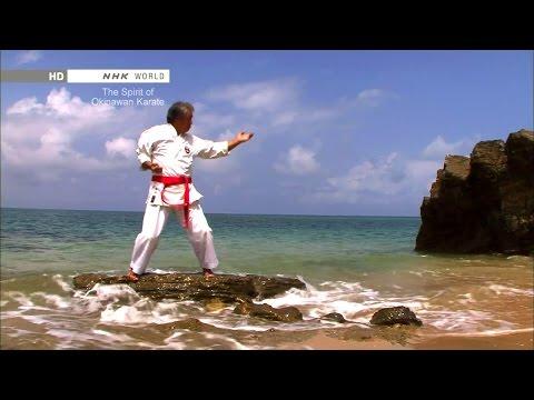 Traditional Karate : The Spirit of Okinawan Karate Vost français