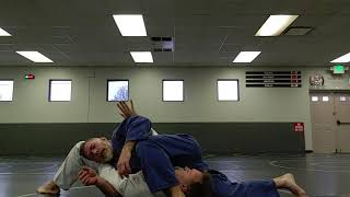 Side control with arm locks