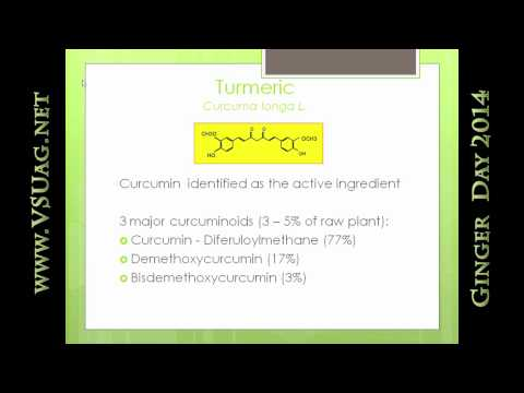 Health Benefits of Ginger and Turmeric - Dr Carlin Rafie
