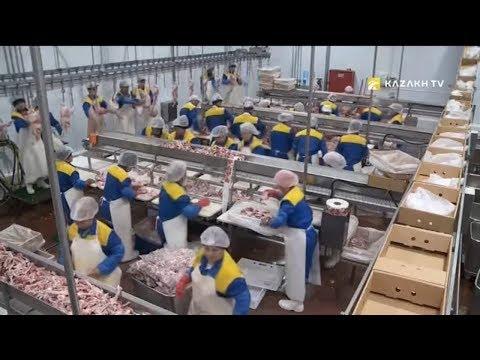 Kazakhstan is enhancing its export potential