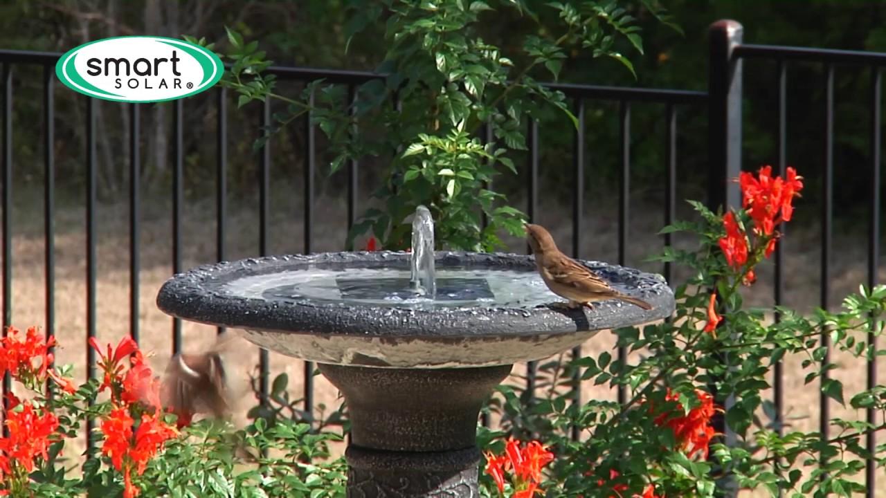 smart solar aquanura solar birdbath insert