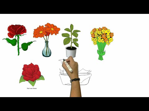 drawings-flower-coloring-for-kids