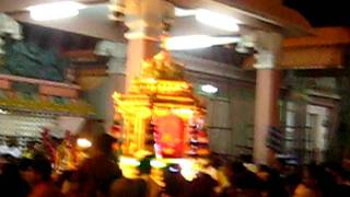 Palani Andavans Golden chariot ride