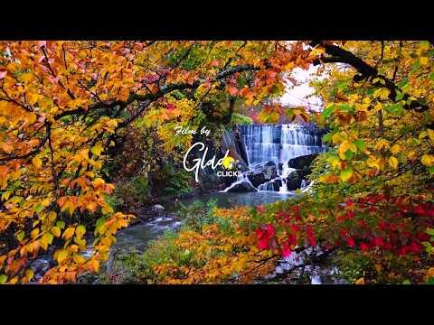 Vermont Fall Foliage 2017