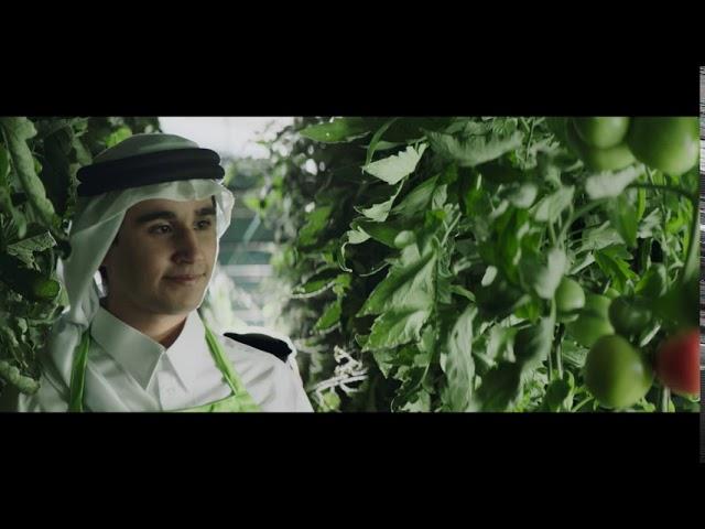 خير قطرنا - صحتك أولاً