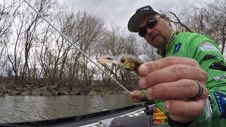 Hawg Hunting on Pickwick Lake with a Crankbait