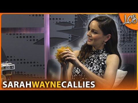 Interview with COLONY's Sarah Wayne Callies