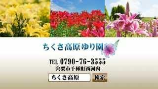 神姫バスニコパチャンネル(ちくさ高原ゆり園) 姫神ゆり 動画 13
