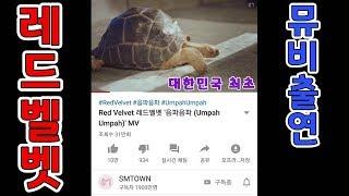 """레드벨벳 """"음파음파"""" 뮤직비디오에 출연한 알다브라 육지…"""