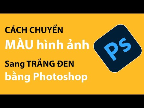 Chuyển ảnh màu sang trắng đen bằng Photoshop | Tự học digital marketing