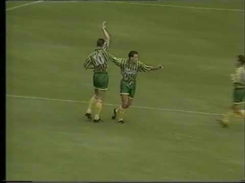 West Bromwich Albion 1994 95 Season review