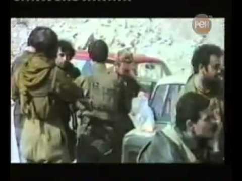 Армяне в войне против Грузин