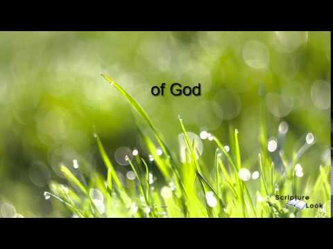 1 Thes 2 11 and 12 Abigail Miller Scripture Song KJV Text   YouTube