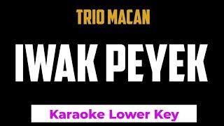 Download Trio Macan - Iwak Peyek Karaoke