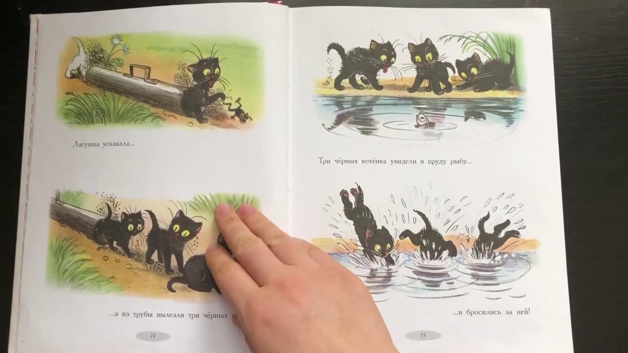 Три котенка. Сказки и картинки Сутеева - YouTube