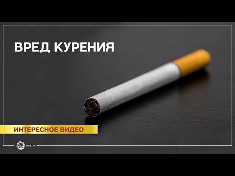 знакомства анкета курение поиск