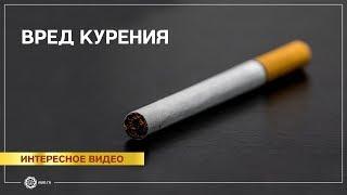 Вред курения!