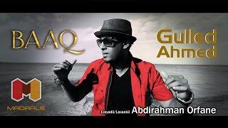 BAAQ  - Gulled Ahmed 2015