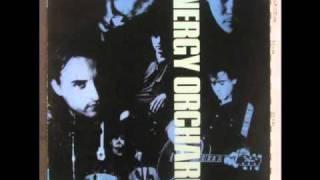Energy Orchard - Somebody