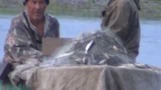 Рыбалка. Сплавные сети. Рыболовные сети.(Рыболовная сеть — плетёное из нитей орудие лова, или сетное орудие лова, используемое в рыболовстве для..., 2014-09-10T22:26:26.000Z)