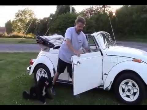 1971 Vw Super Beetle Convertible For By Lastchanceautore