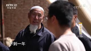 《攻坚日记》 20200612 黄河岸边春来到(4) CCTV农业