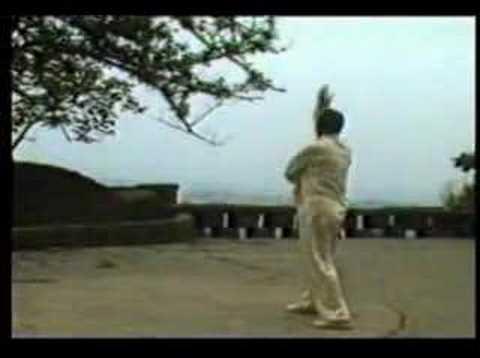Emei Pai - Zhao Men [峨眉派-赵门]