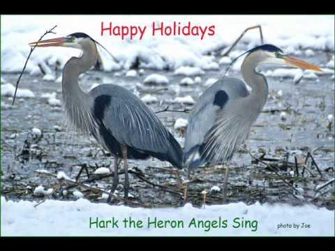 HARK THE HERON ANGELS SING  by Joe Dick.wmv