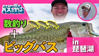 ハードルアー縛りでバスを釣る!Vol.6 in琵琶湖