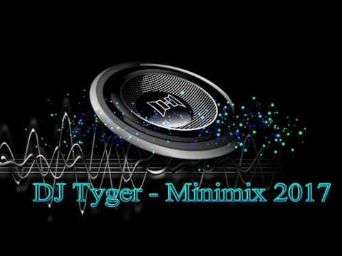 DJ Tyger - Minimix 2017