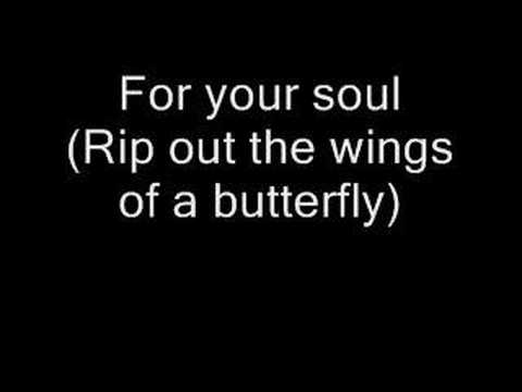 Rip Out the Wings of a Butterfly With Lyrics - YouTube