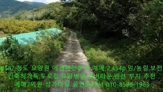 청도 요양원. 애견 펜션 부지 매매 8,114㎡. 개발…