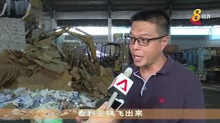 我国明年将有新可回收垃圾处理厂 再循环也生产燃料