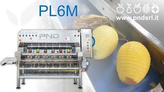 PL6M - Peeling machine for mango