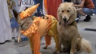 Pet Expo .. San Antonio 2010