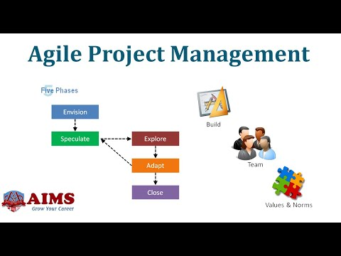 What is Agile Project Management? Agile Definition, Methodol