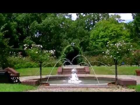 〖ハウステンボス〗   Rose Garden - Huis Ten Bosch