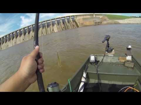 Hooking Into A Oklahoma Long Nose GAR  - OOW Outdoors