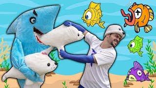 UM TUBARÃO COMEU O ICE !!! (SHARK SHARK SHARK)