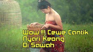 Video Woww.!!! Cewek Cantik Basah-basahan Di Sawah Nyari Keong download MP3, 3GP, MP4, WEBM, AVI, FLV Oktober 2018