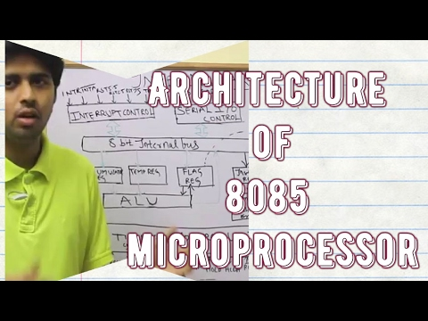 difference between microprocessor and microcomputer pdf