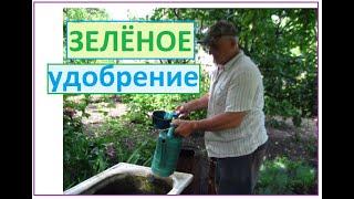 Первая Подкормка РАССАДЫ Зелёным Удобрением