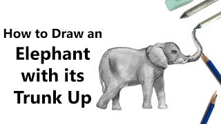 How to Draw an Elephant with its Trunk Up with Pencils [Time Lapse]