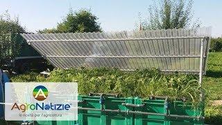La biodegradazione degli agrofarmaci: parla il tecnico