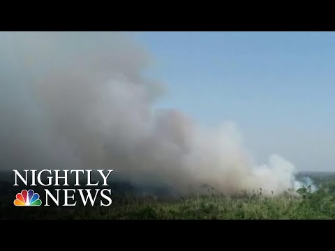 Staggering Number Of Fires Ravaging Amazon Rainforest | NBC