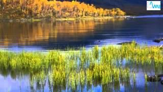 Vos vacances en Laponie finlandaise